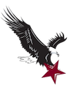 Marion logo of an eagle landing on a star